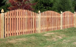 Fence 02
